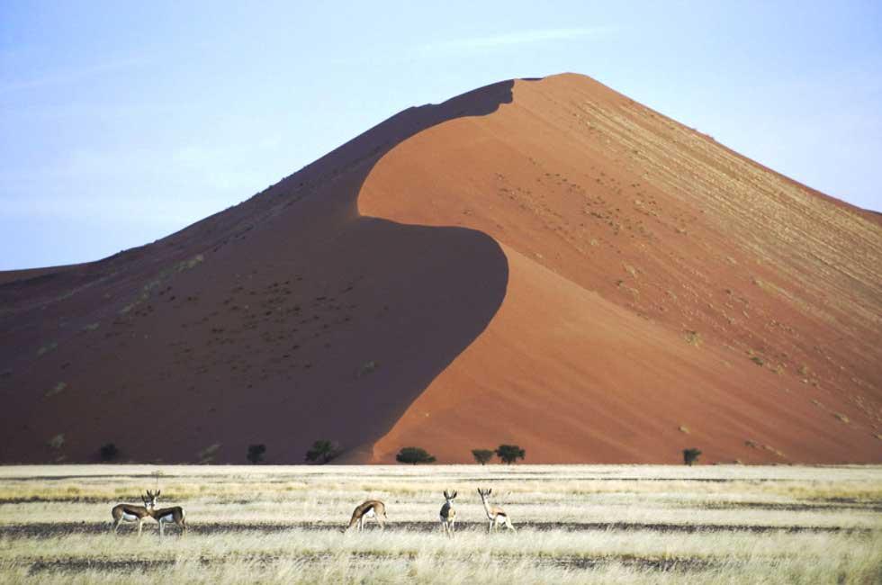 Dunes de Sossusvlei - Voyage avion-taxi namibie